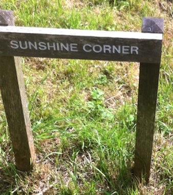 Sunshine_Corner
