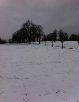 Snow-Park.2