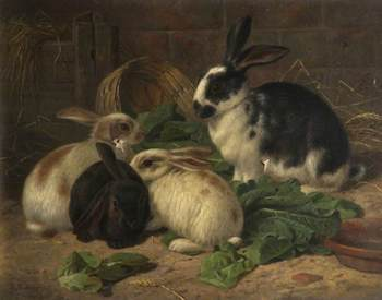 Barber, Alfred R., 1841-1925; Four Rabbits