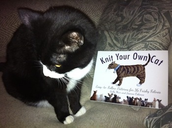 Knit-your-own-cat