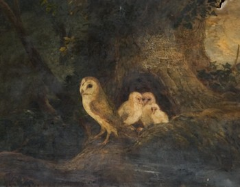 Evening-Landscape-Owls