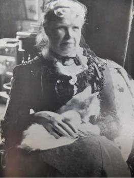 Mrs-Hardy-cat